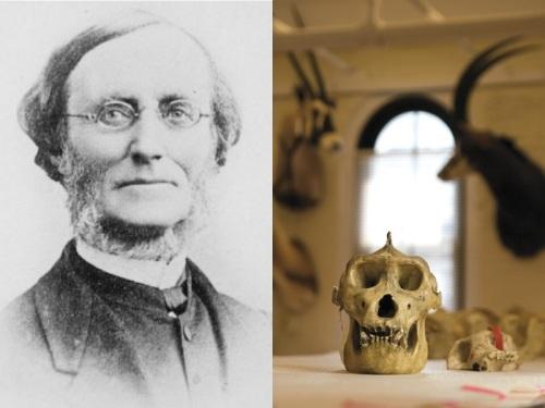 7 Thomas Savage skull