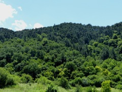 Csík-hegy a Prékókörnyékről