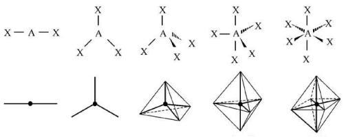 2-ligandum